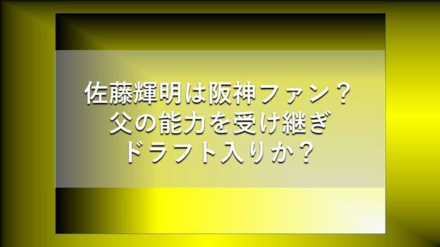 satoteruaki-tigers-title